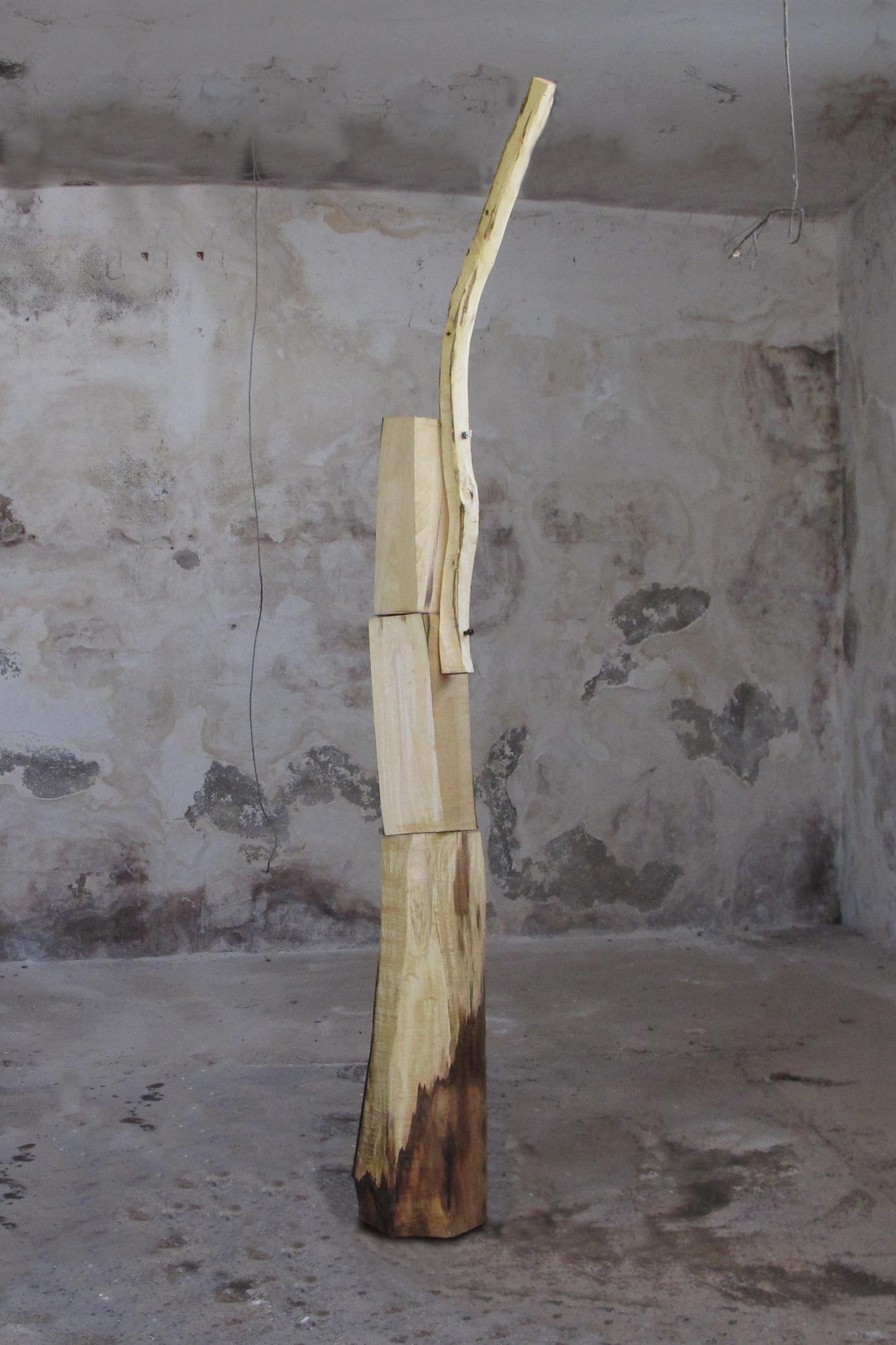 Jimmie Durham 'Deirdre's contingent' walnut 2013 260 x 70 x 50cm © Cultural Documents